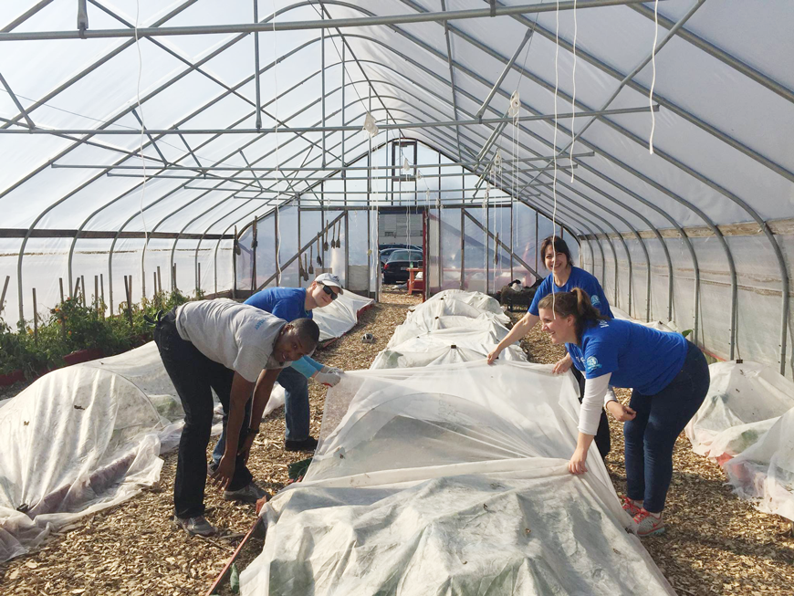 Erin volunteering on an urban farm